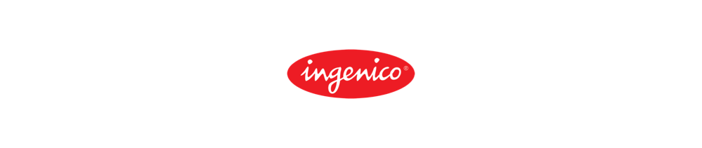 Ingenico is a client of Fischer & Partners Recruitment Agency & Executive Search